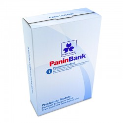 Panin Payment